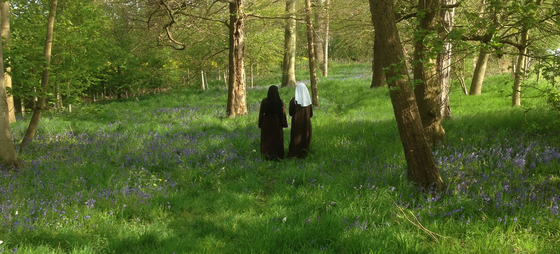 The vocation of the Discalced Carmelite Nuns is a gift of the Spirit<br /><span> Constitutions 10</span>
